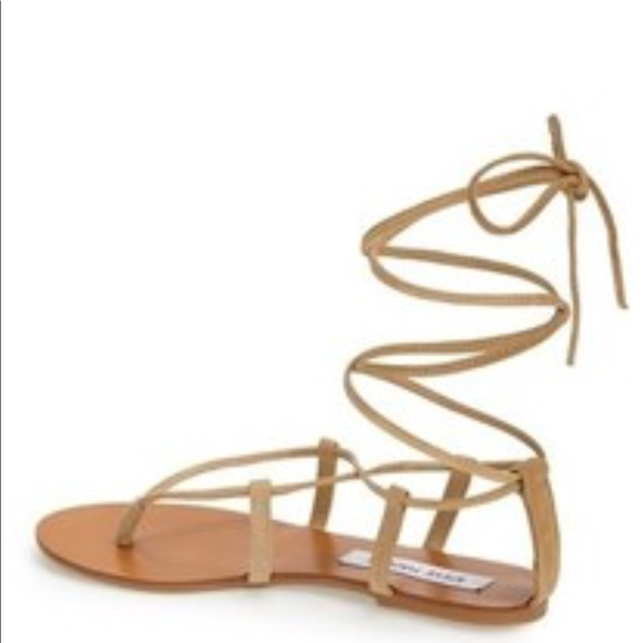 f626501f0e18 Steve Madden Werk It Lace Up Gladiator Sandals. M 5ae333925521be066e4461b7